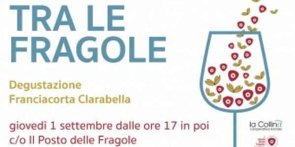 Bollicine tra le Fragole: cooperazione sociale e Franciacorta, un binomio da scoprire!