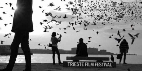 La Città che Cura al Trieste Film Festival