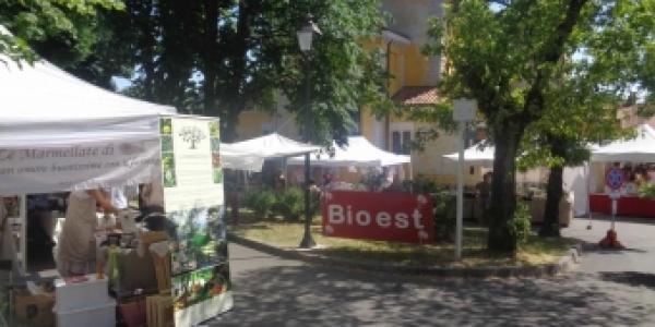 """""""BIOEST 2019"""": al via sabato e domenica 1-2 giugno la fiera dei prodotti naturali e del biologico al Parco di San Giovanni"""